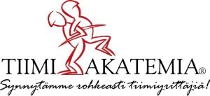 Logo Team Academy